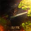 F4537c hawk