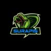 496529 logo