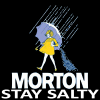 616ddb mortonsalt logo