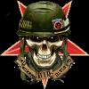D77511 emblem 195x195