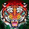 4db313 tiger