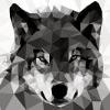 61fca4 blackwolf