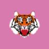 1fc9e2 tiger