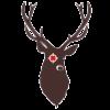 9377d5 shrewsbury gtao logo