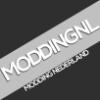 029d07 moddingnl