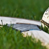 1c62ae hurling stock images