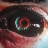 83f568 eye
