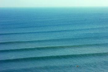 781f1e swelllines