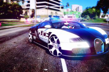 87676c police2