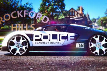 87676c police4