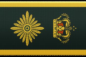 55439f chefpolitiinspektør