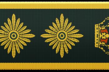 55439f politidirektør