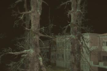 Dc3915 tree
