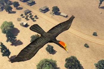 7deeb3 hornbill