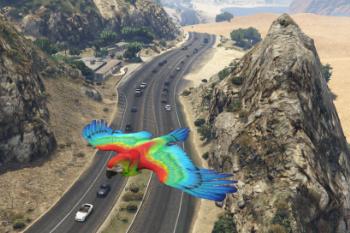 7deeb3 parrot