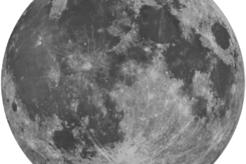 Ff9af7 moon new