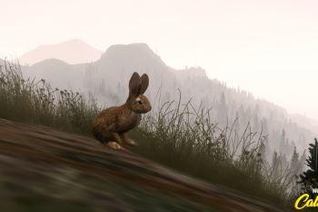 9cb763 bunny2