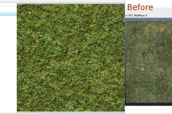 491ddb grass