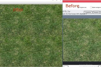 491ddb grass3