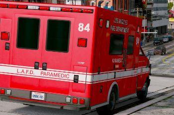 27b0fd medic sign 1 ca los angeles medic 84 gta5