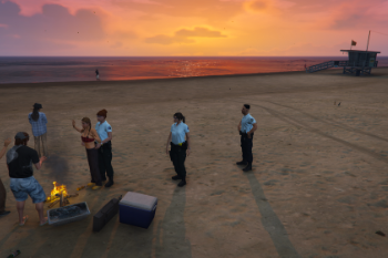 5300fd arrest