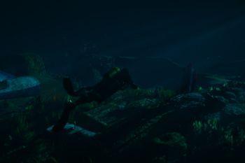 D1b596 underwater