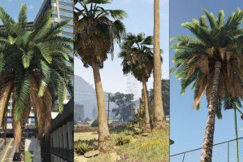 320314 palms