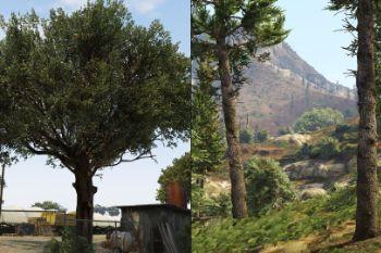 320314 trees