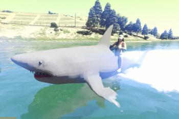 86f4a9 shark13