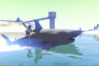 86f4a9 shark14