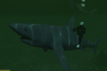 86f4a9 shark5