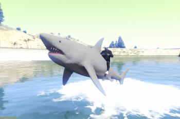 86f4a9 shark6