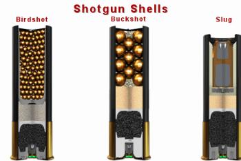 5457bc birdshot buckshot slug shotgun shell comparison