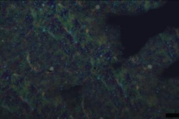 Af9560 starfield2