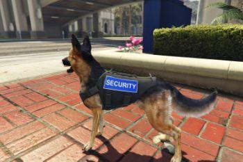 31ce5a security