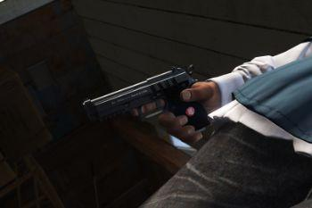 87f394 nxg pistol update
