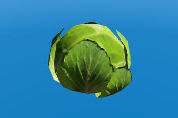 Bb8064 cobbage