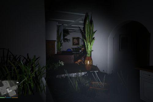 Abandoned Michael's House
