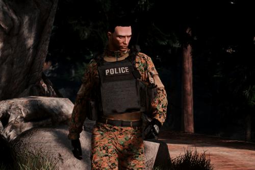 Aegis Police Plate [EUP]