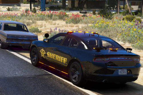 BCSO 2018 Charger Skin