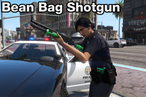 Bean Bag Shotgun