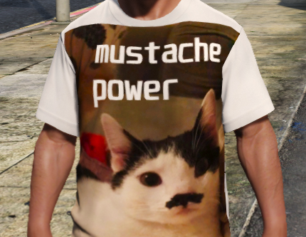 Cat shirt for Franklin