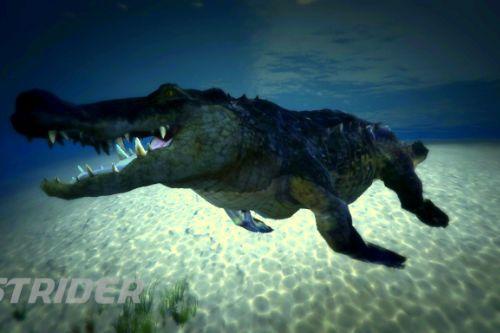 392a52 crocs1
