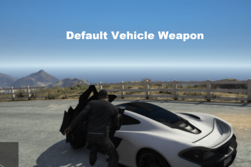 Default Vehicle Weapon