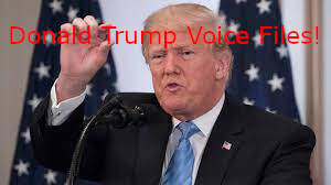Donald Trump Voice Package [Add-On]