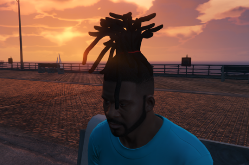 Dreads & Braids Pack for Frank