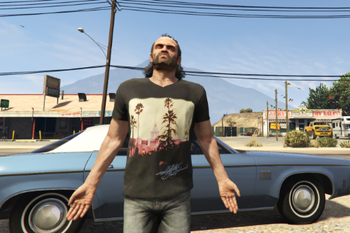 "Eagles ""Hotel California"" merch t-shirt for Trevor"