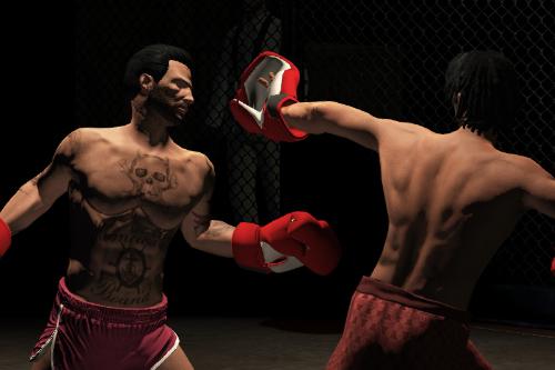 Everlast Boxing Gloves - EUP