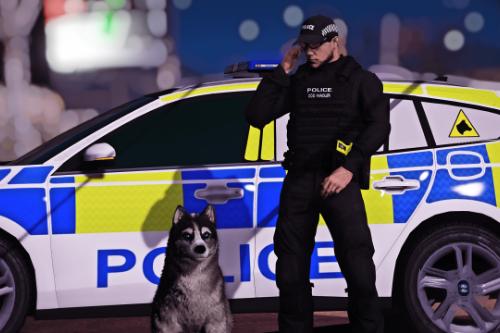 (EUP) Generic Police Dog Handler Vest