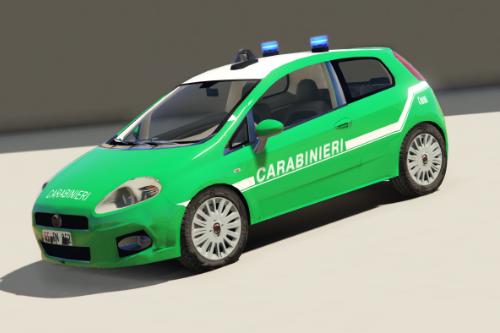 Fiat Punto - Carabinieri Forestali